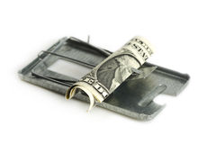 Free money is only in a mousetrap Stock Photography
