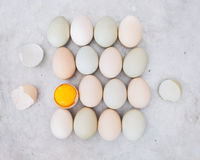Free range chicken eggs. Single egg yolk with shell and whole eggs on rustic metal background, organic farming concept. Top view, blank space, vintage toned Stock Photography