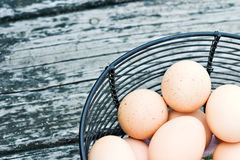 Free Range Eggs. Black wire basket of freshly laid free range eggs on rustic background Royalty Free Stock Images