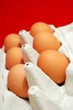 Free range eggs Stock Photography