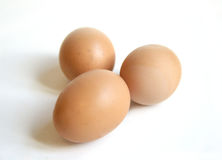 Free Range Eggs. Three fresh free range eggs on white background Stock Image