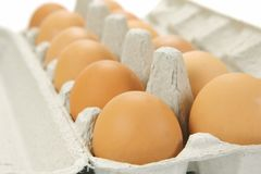 Free Range Eggs Stock Photos