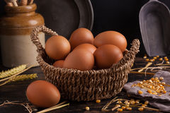 Free range eggs Stock Photography