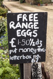 Free Range Eggs Stock Image