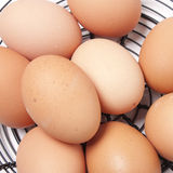 Free Range Eggs Royalty Free Stock Images