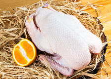 Free Range Farm Whole Duck on cutting board and straw Stock Photos