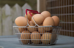 Free range hens eggs in a basket Royalty Free Stock Images