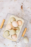 Free range, organic chicken eggs of araucana hens. And feathers in rustic metal holder. Top view, blank space, vintage toned image Royalty Free Stock Photography