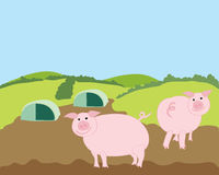 Free range pigs. A hand drawn illustration of two free range pigs in a landscape under a blue sky Royalty Free Stock Images