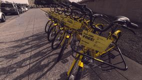 Free ride bike in the middle city of Dallas royalty free stock images
