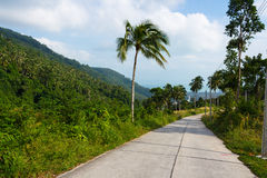 Free road at the tropical forest in Samui island. Open road at beautiful tropic mountains at Samui island, Thailand Royalty Free Stock Image