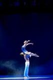 Free soaring-acrobatics Stock Photography