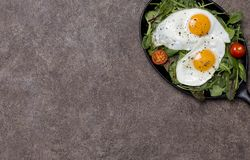 Free space with fried eggs and fresh herbs at pan stock photography