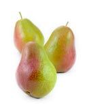 Free Standing Corella Pears Stock Image