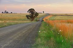 Free State Back Roads Royalty Free Stock Photo