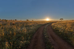 Free State road to sunrise Royalty Free Stock Photos