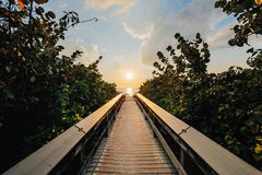 Free stock photo of backlit, boardwalk, clouds, dawn Royalty Free Stock Photo