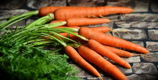 Free stock photo of carrot, vegetable, produce, local food Royalty Free Stock Photography