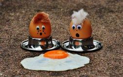 Free stock photo of egg Royalty Free Stock Photos