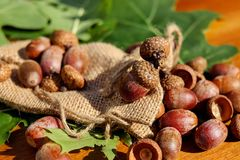 Free stock photo of food, nut, fruit, vegetarian food Stock Images