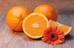 Free stock photo of fruit, valencia orange, produce, bitter orange Royalty Free Stock Photography