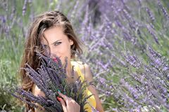 Free stock photo of lavender, beauty, purple, girl Royalty Free Stock Photography