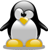 Free stock photo of penguin, bird, flightless bird, beak Royalty Free Stock Images