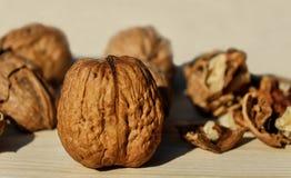 Free stock photo of tree nuts, walnut, nuts & seeds, nut Stock Photos