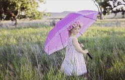 Free stock photo of umbrella, purple, pink, lavender Royalty Free Stock Images