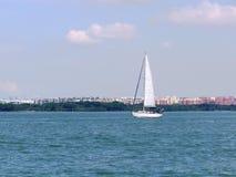 Free stock photo of waterway, water transportation, sky, sail Royalty Free Stock Photo