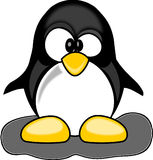Free stock photo of yellow, beak, penguin, flightless bird Royalty Free Stock Image