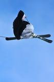 Free style skier Royalty Free Stock Photos