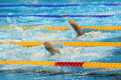 Free style swimmers in action Stock Images