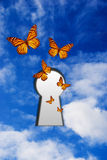 Free to fly. Butterflies flying out of a keyhole in the sky, freedom concept Stock Photography