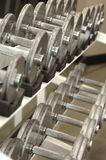 Free Weights Stock Photography