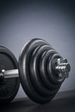 Free Weights - Dumbbell Stock Image