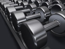 Free weights, dumbbells, gym. Free weights at the gym. Good for fitness, sports, health and wellness concept Stock Illustration