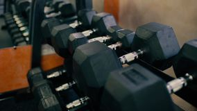 Rows of dumbbells in the gym, specular background