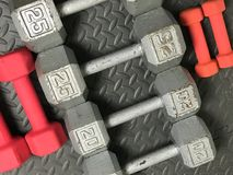 Free Weights. On a rubber workout mat Stock Photo