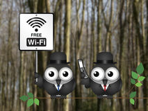 Free WIFI Royalty Free Stock Image