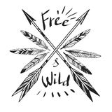 Free & Wild. Arrows and feathers on white background. Vector template Stock Photos