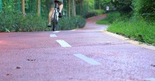 Free woman cycling at sunny morning park. Free asian woman cycling at sunny morning park stock video