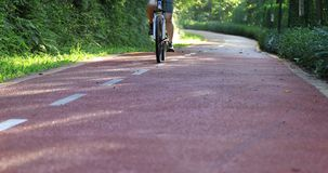 Free woman cycling at sunny morning park. Trail stock footage