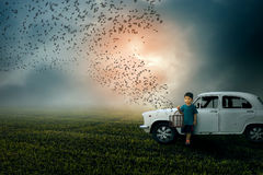 A Free World-Boy child holding bird cage freeing birds Royalty Free Stock Photo