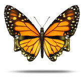 Free Your Mind. And freedom to explore the opportunities of life  and personal achievement as a Monarch butterfly in the shape of a human head showing the power Stock Images
