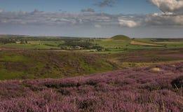 Freeborough kulle på den nordliga kanten av de norr York hederna arkivfoton