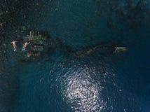 Freediver和船击毁 库存图片
