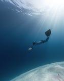 Freediver Fotografia Stock Libera da Diritti