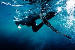 Freediver bad i havet fotografering för bildbyråer