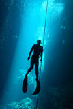 Freediver. In the cenote - mexico Royalty Free Stock Photos